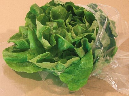 Salatbeutel, geblockt